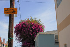 Speedway-Straßenschild in Venedig, Kalifornien Stockfotografie