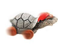 Speedy cool tortoise in cap and sunglasses Royalty Free Stock Image