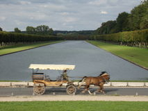 Speedy Horse Carriage in Versaille. One speedy horse carriage near the castle of Versaille Stock Images