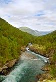 Speedy river. Stock Image