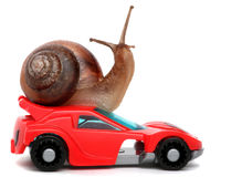 Speedy snail like car racer. Concept of speed and success. Wheels are blur because of moving. Isolated white background Royalty Free Stock Images