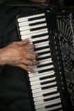 Speel de harmonika royalty-vrije stock afbeelding