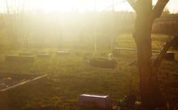 Speelplaats in de zonsondergang Stock Foto