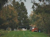 Speelplaats in het bos stock afbeeldingen