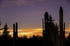 Speelplaats van de Goden op Burnaby-Berg met mistige nacht op de achtergrond Stock Afbeeldingen