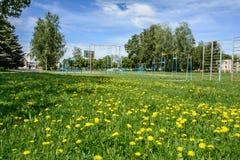 Speelplaats voor kinderen en tieners in het dorp stock fotografie