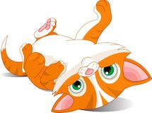 Speels katje royalty-vrije illustratie