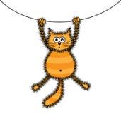 Speelse rode kat Stock Afbeelding