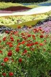 Speelse tuin Royalty-vrije Stock Afbeeldingen