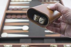Speelspelenreeks - het Rolling Backgammon dobbelt Stock Foto's