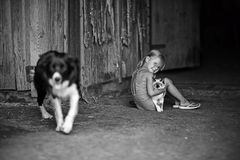 Speelt een meisje en met een kat en een hond royalty-vrije stock foto