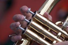 Speelwit mijn vingers Stock Fotografie