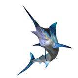 Speerfisch 01 stock abbildung