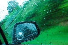 Spegel blindspot, exponeringsglas, bil, rörelse, gräsplan, träd Arkivfoto