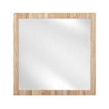 Spegel i träden isolerade ekramen - Royaltyfria Bilder