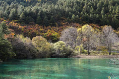 Spegel lake Royaltyfri Bild