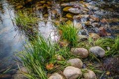 Spegel sjö i den Yosemite nationalparken, Kalifornien fotografering för bildbyråer