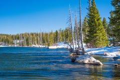 Spegel sjö i medicinpilbågenationalskogen, Wyoming Fotografering för Bildbyråer