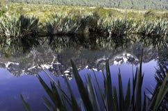 Spegel sjöarna i den Fiordland nationalparken Härliga Nya Zeeland Arkivfoton