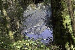 Spegel sjöarna i den Fiordland nationalparken Härliga Nya Zeeland Royaltyfria Foton