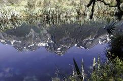 Spegel sjöarna i den Fiordland nationalparken Härliga Nya Zeeland Royaltyfria Bilder