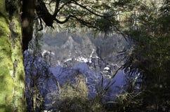 Spegel sjöarna i den Fiordland nationalparken Härliga Nya Zeeland Arkivfoto