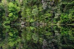 Spegel Tarn, Nya Zeeland Royaltyfri Fotografi