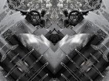 Spegeleffekt av en springbrunn royaltyfri illustrationer