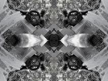 Spegeleffekt av en springbrunn stock illustrationer