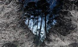 Spegelström II Arkivfoton