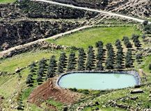Speicherbecken für die Bewässerung eines Olivenhains in der Wüste nahe Karak, Jordanien stockfoto