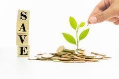 Speichern Sie Mitteilung auf hölzernem Block, Anlage und Münzen, Investition und Geschäftskonzepte Stockbilder