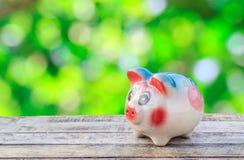 Speichern Sie Schwein auf hölzernem Hintergrund Stockbilder