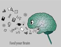 Speisen Sie Ihr Gehirn lizenzfreie abbildung