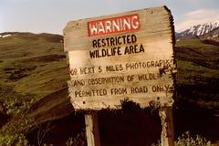 Speisen Sie nicht die Bären lizenzfreie stockfotografie