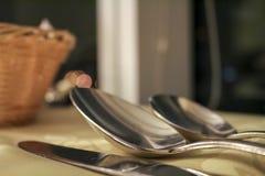 Speisen von Gerätmahlzeitzeit Stockbild