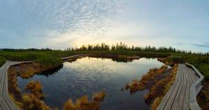 Spektakulär solnedgångsikt av en sjö som omges av våtmarker royaltyfri bild