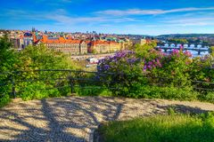 Spektakulär sommarcityscapepanorama med blommor, Prague, Tjeckien, Europa royaltyfri bild