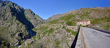 Spektakulär väg D84 längs Scala di Santa Regina i Korsika Royaltyfri Foto