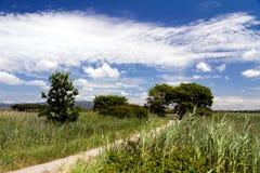 Spektakulära sikter, Tuscany, Italien, en sommardag Arkivfoton