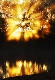 Spektakulära soluppgångsolstrålar som brister till och med reflekterande flodvatten för mist Royaltyfri Fotografi