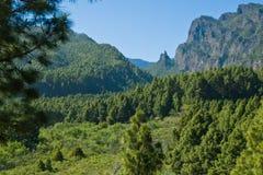 Spektakulärt landskap av Cumbrecita, Caldera de Taburiente Royaltyfri Foto
