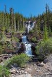 Spektakularna gmatwanina Spada, widzii od Icefields Parkway w Banff parku narodowym Obraz Royalty Free