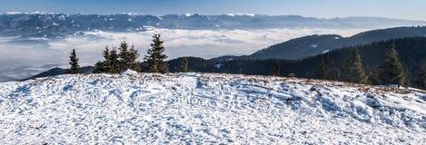 Spektakularnej zimy halna panorama od Mincol wzgórza w Mala Fatra górach w Sistani Zdjęcie Stock