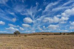 Spektakularny Afrykański sawanna krajobraz z epickim niebem obraz stock