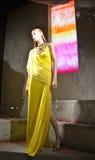 Spektakularny nadokienny pokaz przy Ralph Lauren w NYC Fotografia Royalty Free