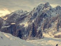 Spektakularny zimy góry krajobraz iluminujący położenia słońcem obrazy royalty free