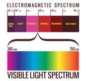 Spektrumdiagram för synligt ljus Royaltyfri Illustrationer