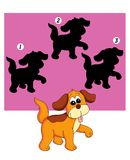 Spel 74, de schaduw van de hond Royalty-vrije Stock Foto's