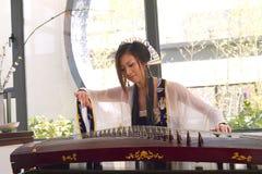 Spel guzheng Stock Foto